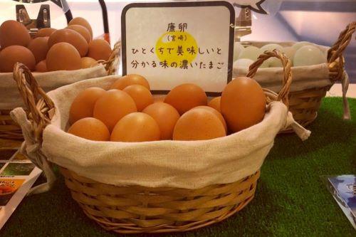 極上の卵 東康夫養鶏場